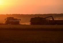 В России очередной рекорд урожая, она может стать ведущей аграрной державой мира.