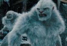 Снежный человек, йети все-таки оказался медведем.