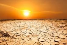 Смертность от жары к 2080 году может вырасти в сотни раз.