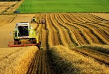 В РФ и на Западе растет спрос на органическую продукцию России.