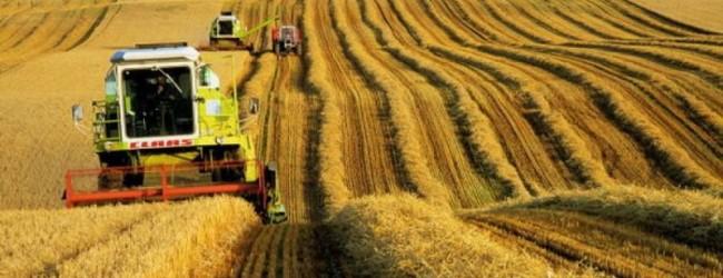Экспорт продукции АПК России продолжает набрать динамику.