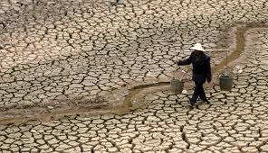 Нехватка воды может стать источником смерти в XXI веке.